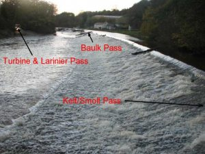 Weir with Passes Identified